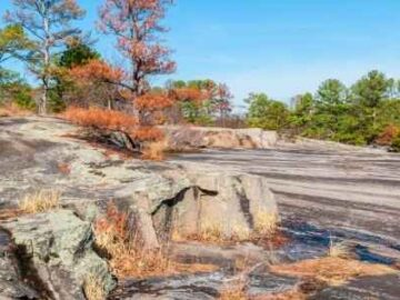 Georgia's Stone Mountain Park