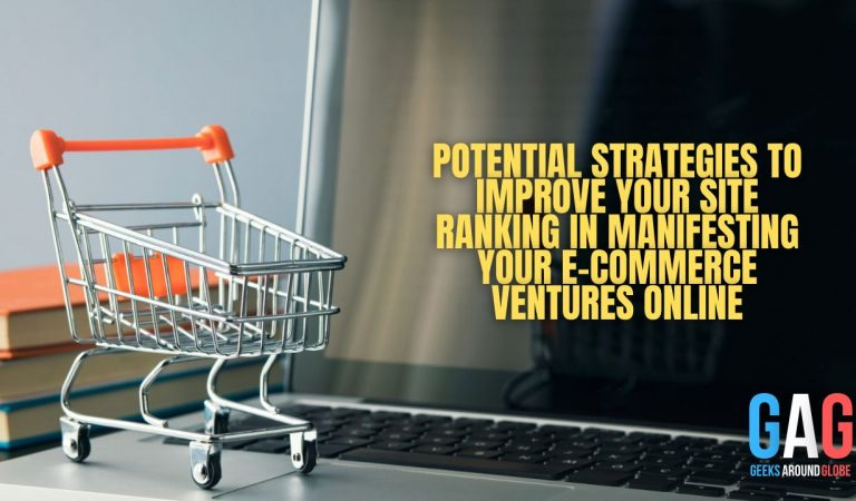 Potential Strategies to Improve Your Site Ranking in Manifesting Your E-commerce Ventures Online